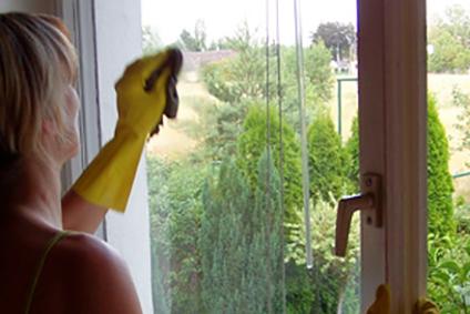 Fensterreinigung ....